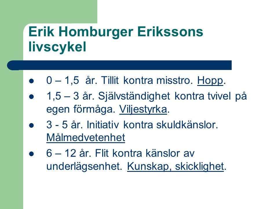 Erik Homburger Erikssons livscykel