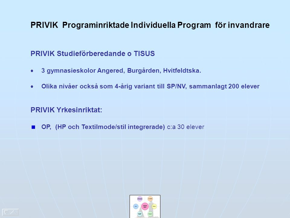 PRIVIK Programinriktade Individuella Program för invandrare