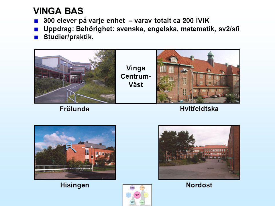 VINGA BAS 300 elever på varje enhet – varav totalt ca 200 IVIK