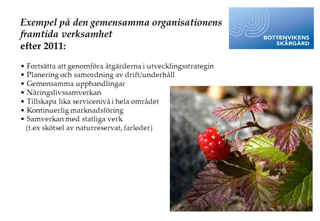 Exempel på den gemensamma organisationens framtida verksamhet