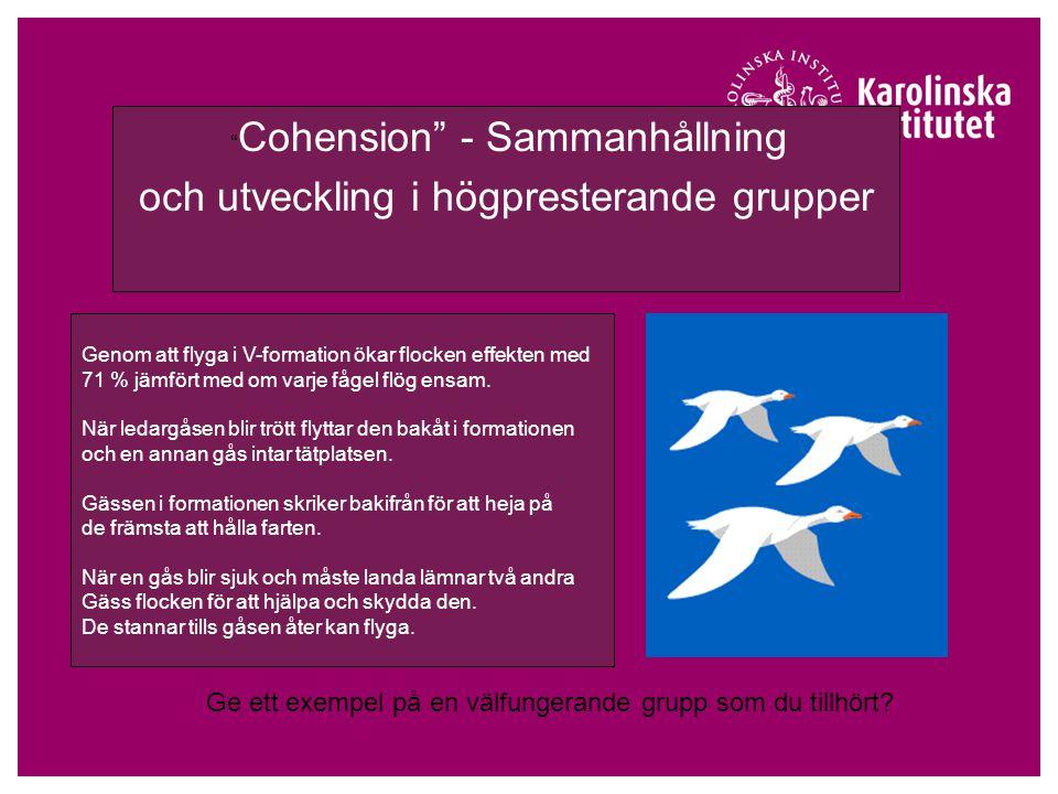 Cohension - Sammanhållning och utveckling i högpresterande grupper