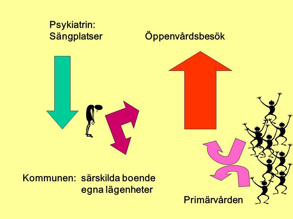 Psykiatrin: Sängplatser Öppenvårdsbesök. Kommunen: särskilda boende. egna lägenheter.