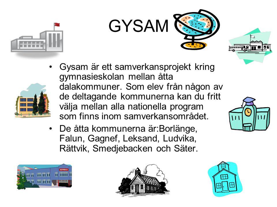 GYSAM