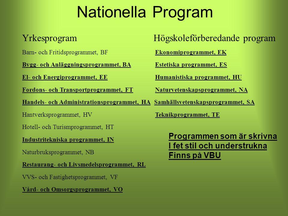 Nationella Program Yrkesprogram Högskoleförberedande program