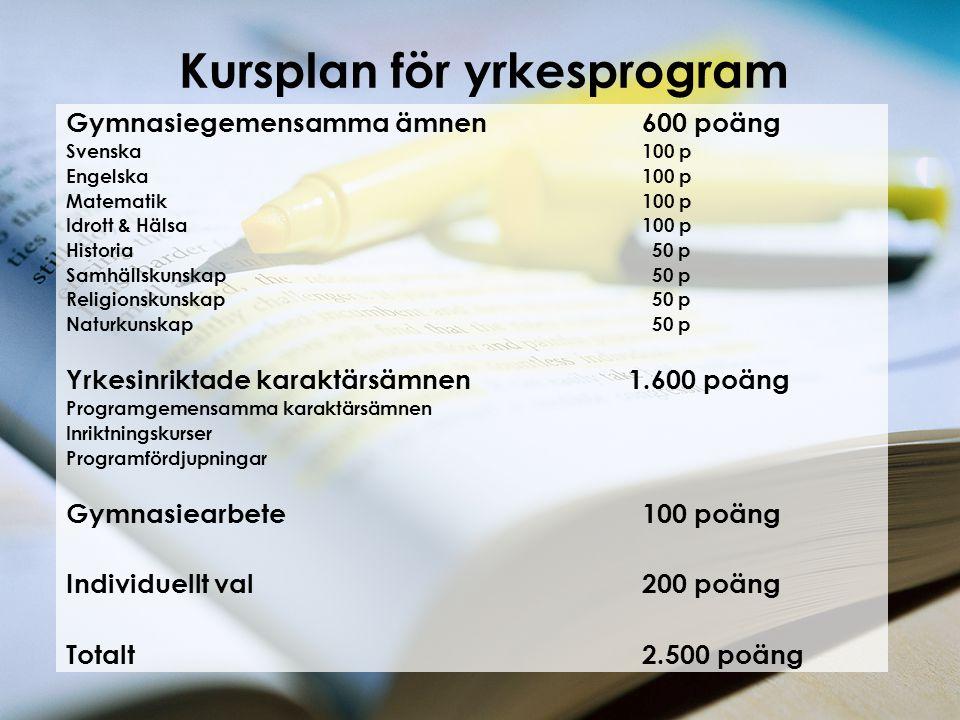 Kursplan för yrkesprogram