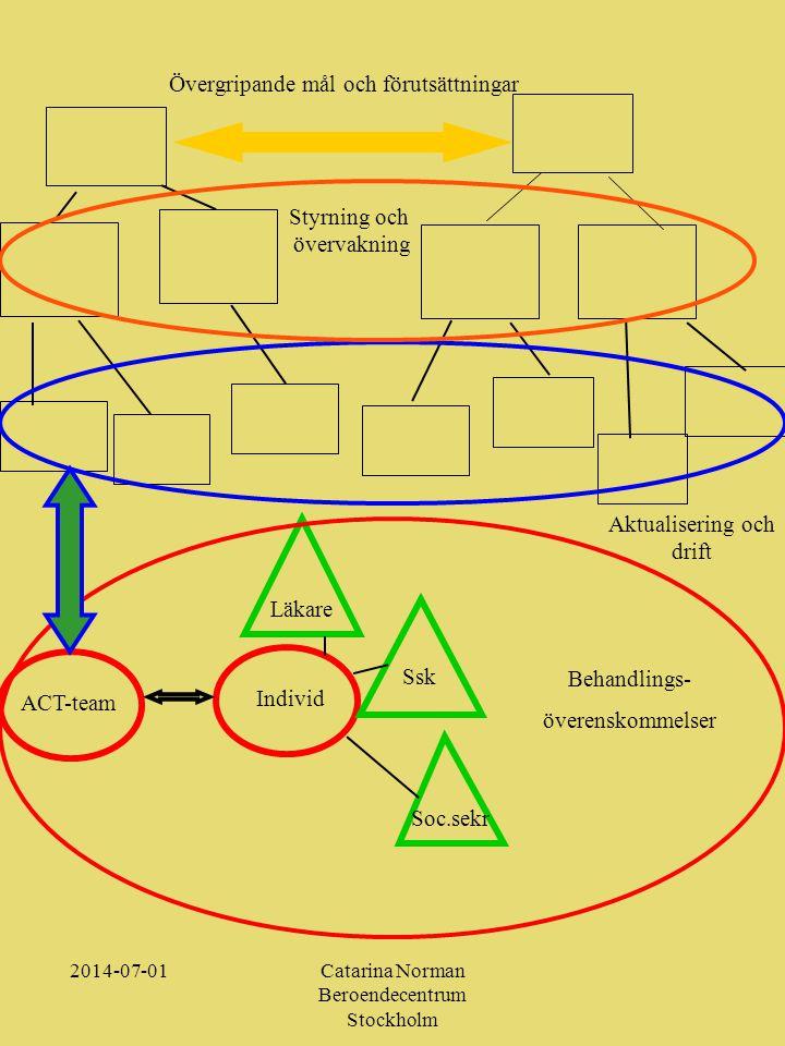 Övergripande mål och förutsättningar