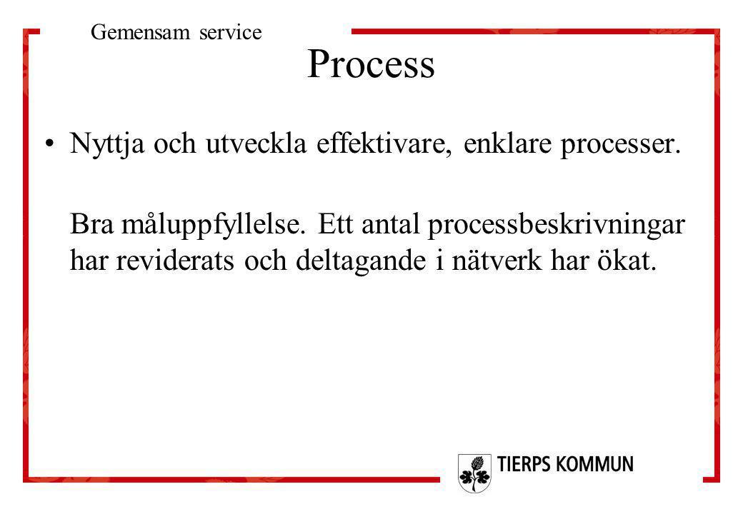Process Nyttja och utveckla effektivare, enklare processer.