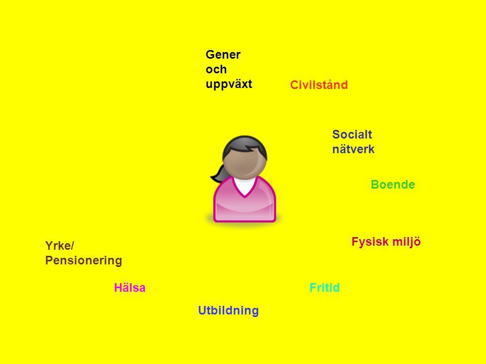 Gener och uppväxt Civilstånd. Socialt nätverk. Boende. Fysisk miljö. Yrke/ Pensionering. Hälsa.