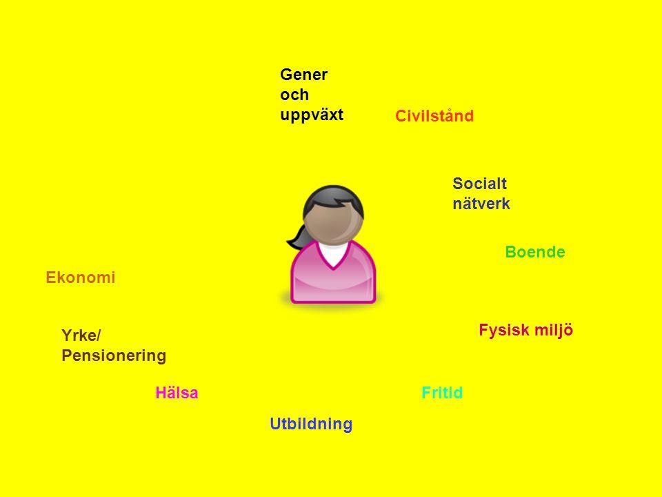 Gener och uppväxt Civilstånd. Socialt nätverk. Boende. Ekonomi. Fysisk miljö. Yrke/ Pensionering.