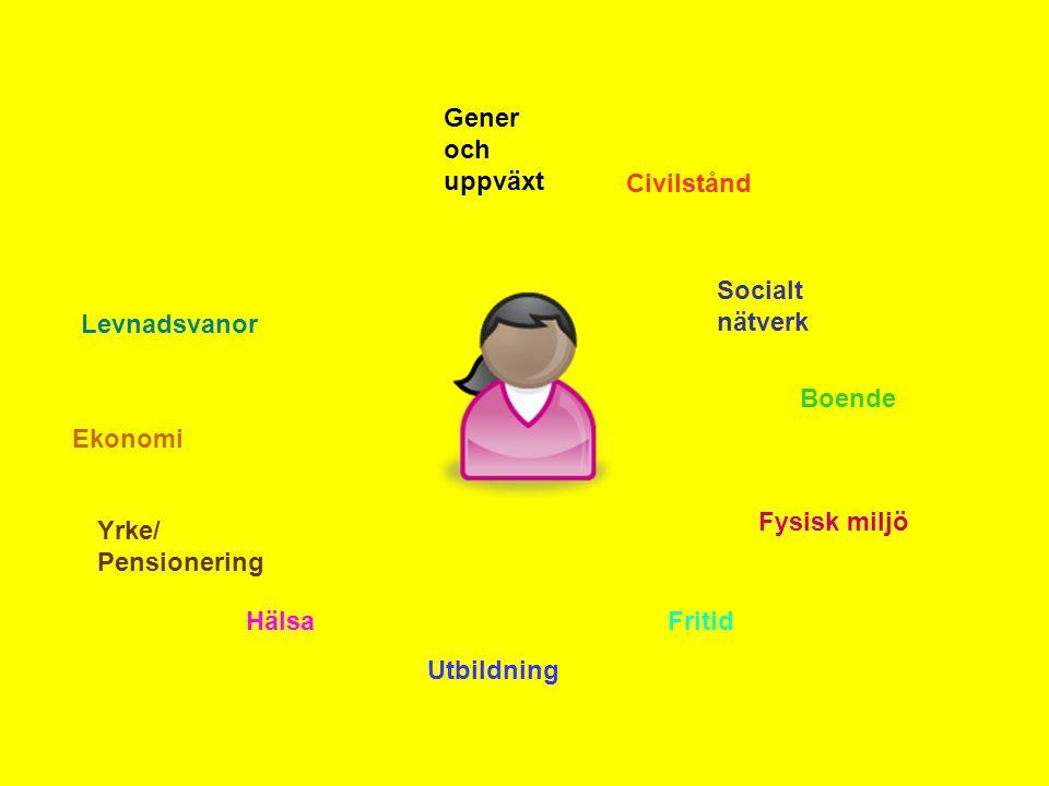 Gener och uppväxt Civilstånd. Socialt nätverk. Levnadsvanor. Boende. Ekonomi. Fysisk miljö. Yrke/ Pensionering.