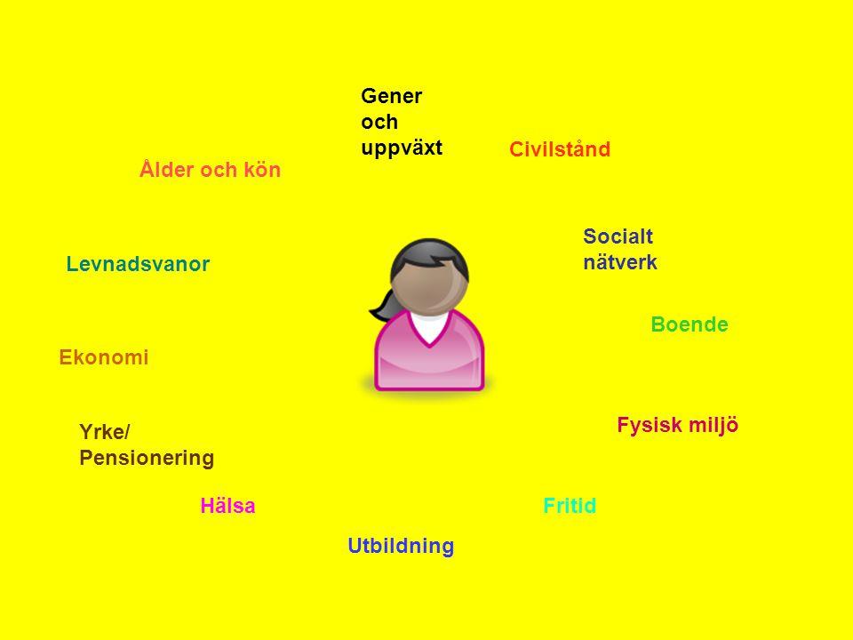 Gener och uppväxt Civilstånd. Ålder och kön. Socialt nätverk. Levnadsvanor. Boende. Ekonomi. Fysisk miljö.