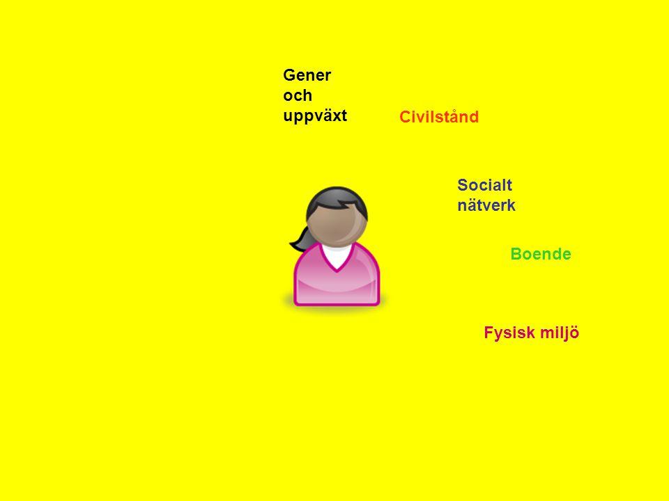 Gener och uppväxt Civilstånd Socialt nätverk Boende Fysisk miljö
