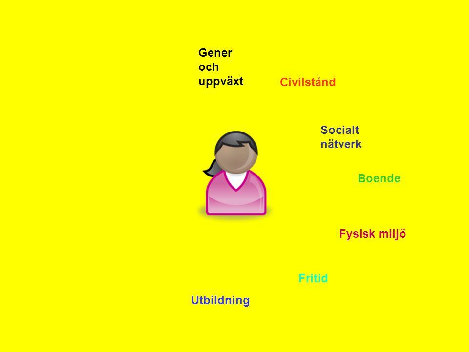 Gener och uppväxt Civilstånd Socialt nätverk Boende Fysisk miljö Fritid Utbildning