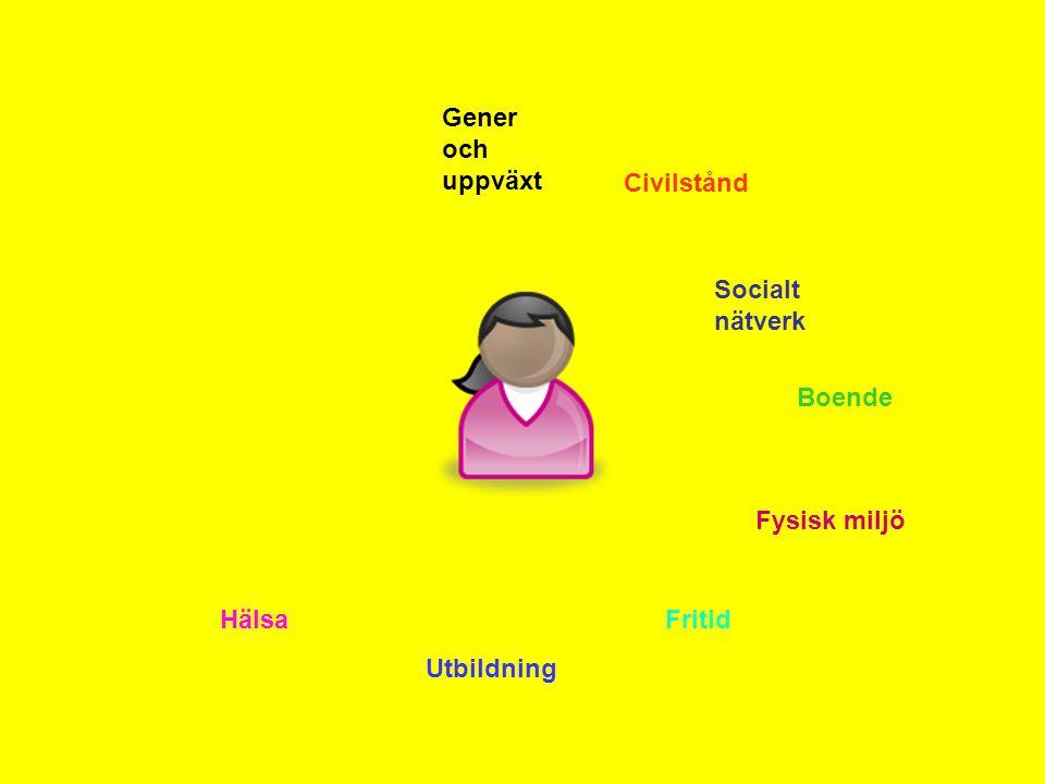 Gener och uppväxt Civilstånd Socialt nätverk Boende Fysisk miljö Hälsa Fritid Utbildning