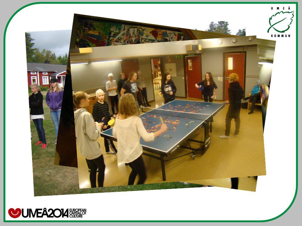 VERKSAMHETEN Sjöfrugården är en fritidsgård (Umeå fritid unga) som bedriver öppen verksamhet för ungdomar i åldern 13-17 år.