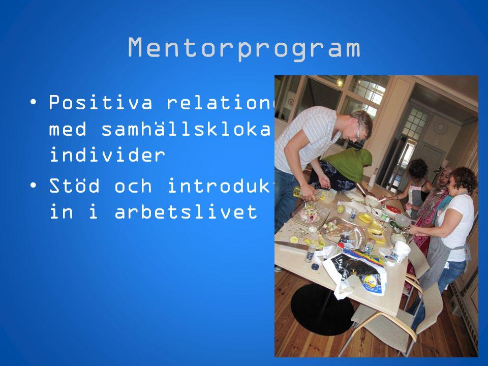 Mentorprogram Positiva relationer med samhällskloka individer