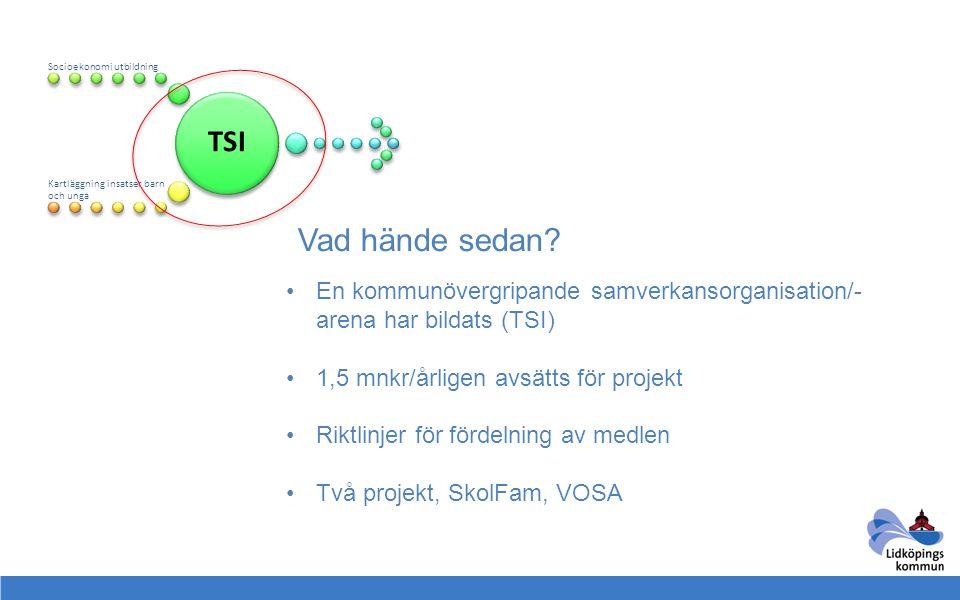 TSI Socioekonomi utbildning. Kartläggning insatser barn och unga. Vad hände sedan