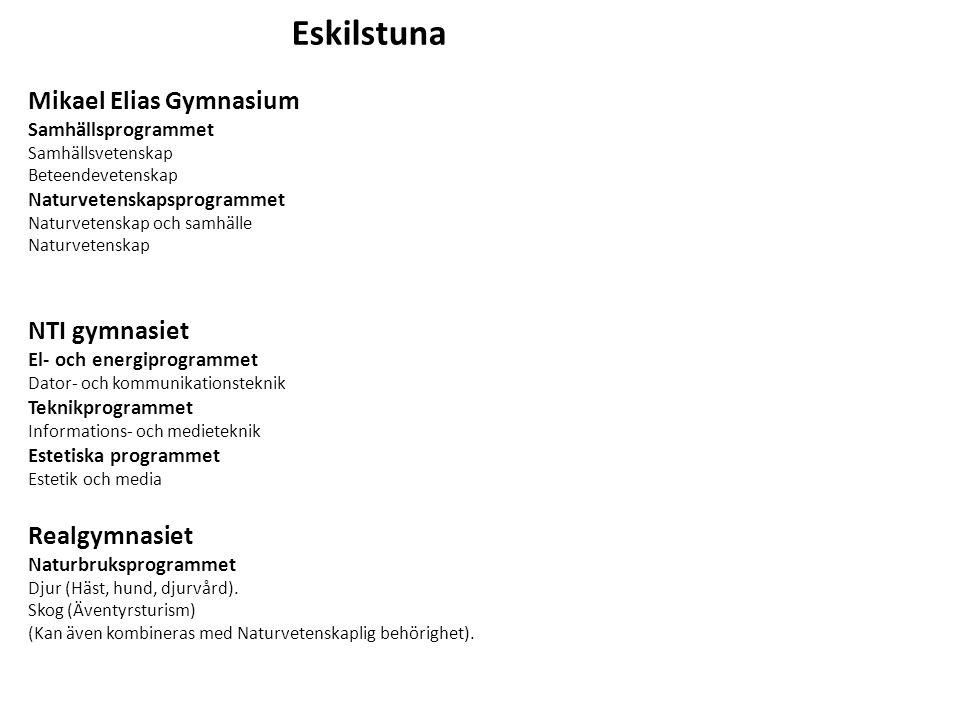 Eskilstuna Mikael Elias Gymnasium NTI gymnasiet Realgymnasiet