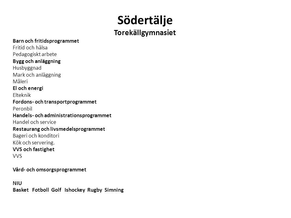 Södertälje Torekällgymnasiet Barn och fritidsprogrammet