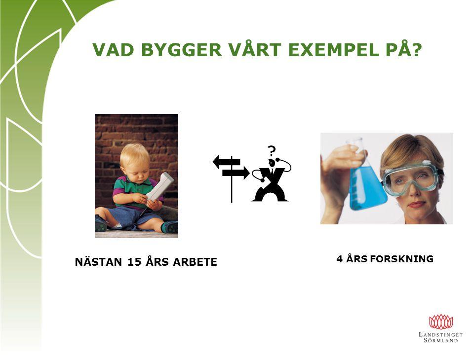 VAD BYGGER VÅRT EXEMPEL PÅ
