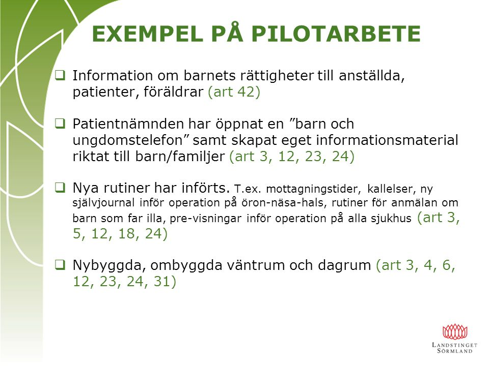 EXEMPEL PÅ PILOTARBETE