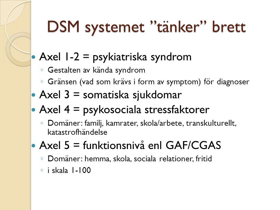 DSM systemet tänker brett