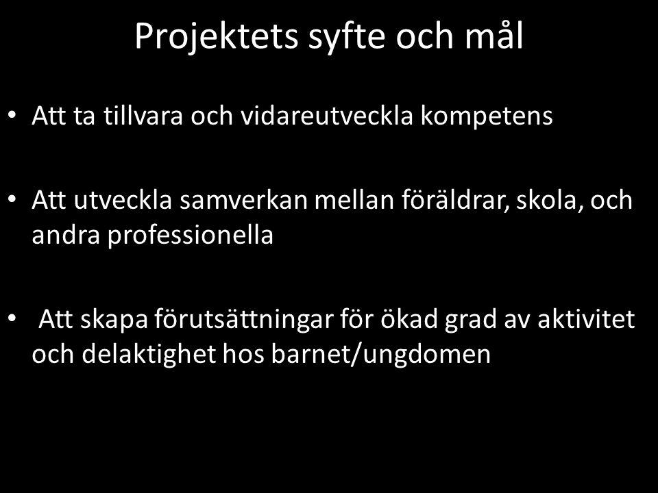 Projektets syfte och mål
