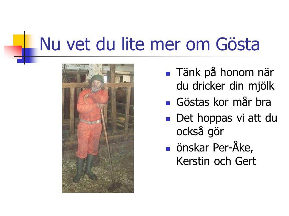 Nu vet du lite mer om Gösta
