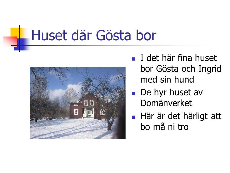 Huset där Gösta bor I det här fina huset bor Gösta och Ingrid med sin hund. De hyr huset av Domänverket.