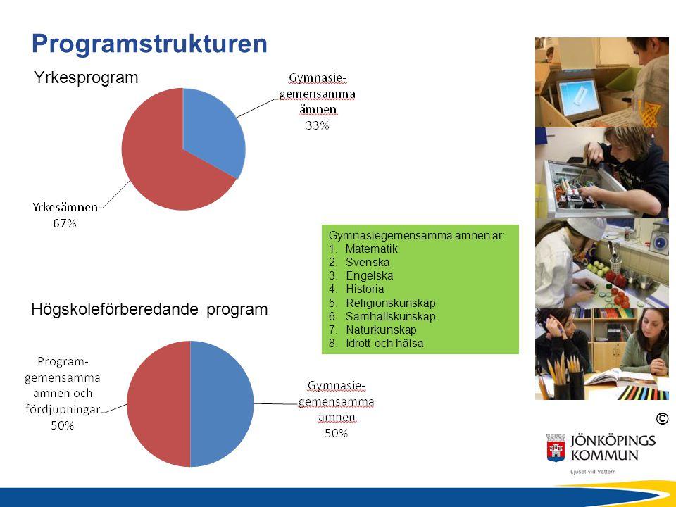 Programstrukturen Yrkesprogram Högskoleförberedande program