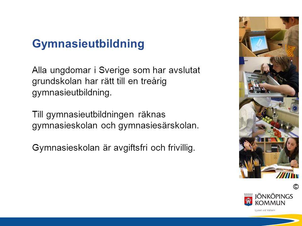 Gymnasieutbildning Alla ungdomar i Sverige som har avslutat grundskolan har rätt till en treårig gymnasieutbildning.