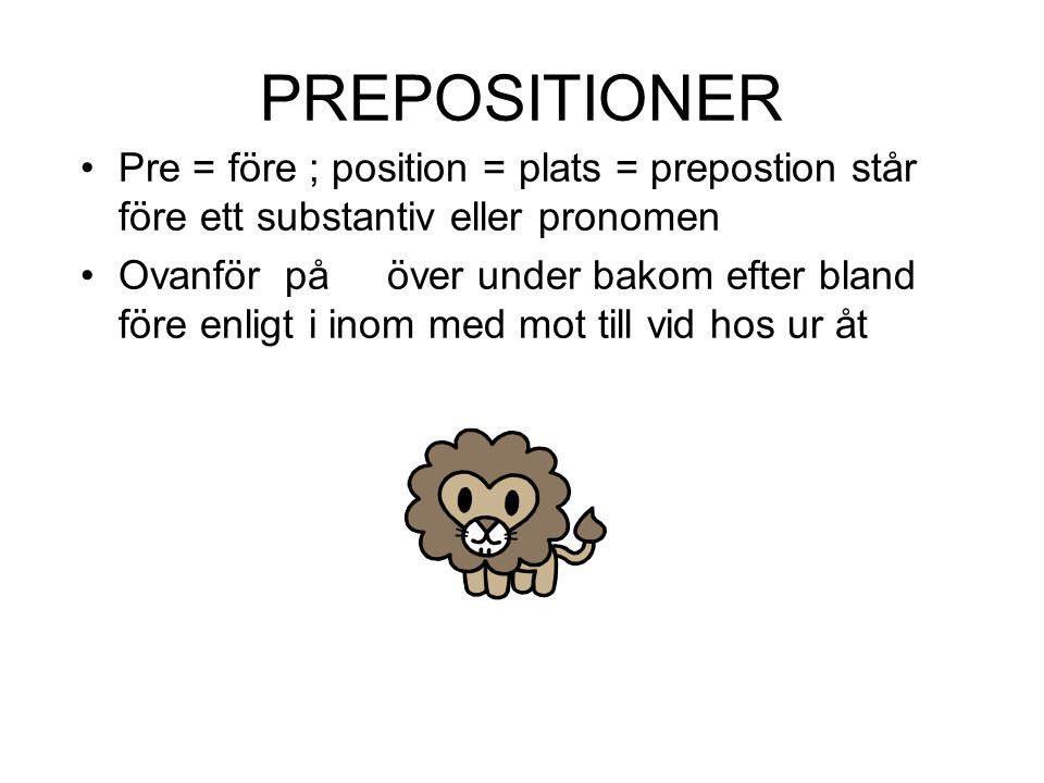 PREPOSITIONER Pre = före ; position = plats = prepostion står före ett substantiv eller pronomen.