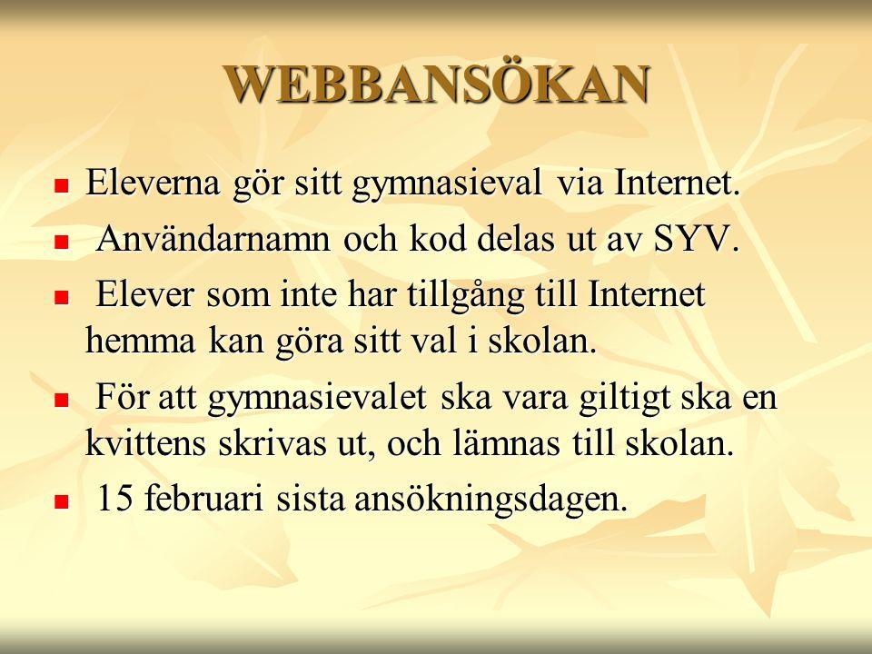WEBBANSÖKAN Eleverna gör sitt gymnasieval via Internet.