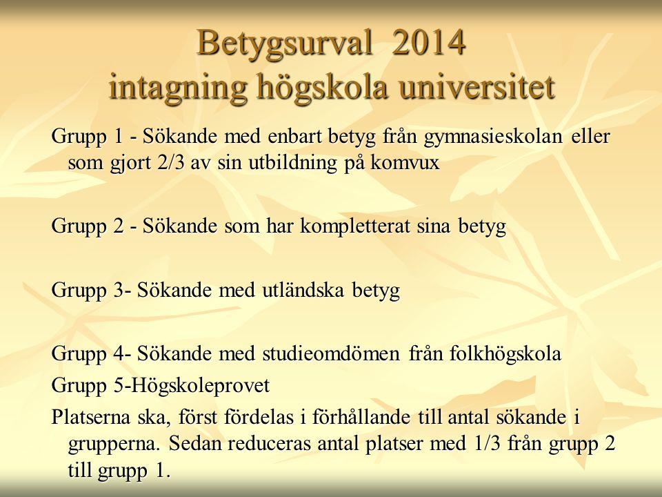 Betygsurval 2014 intagning högskola universitet