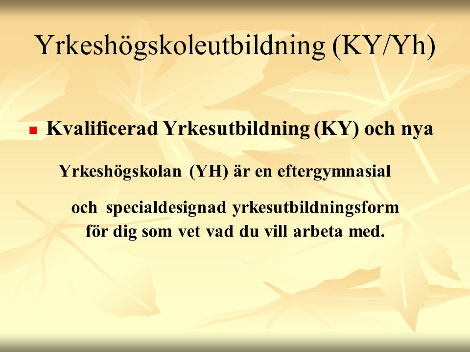 Yrkeshögskoleutbildning (KY/Yh)