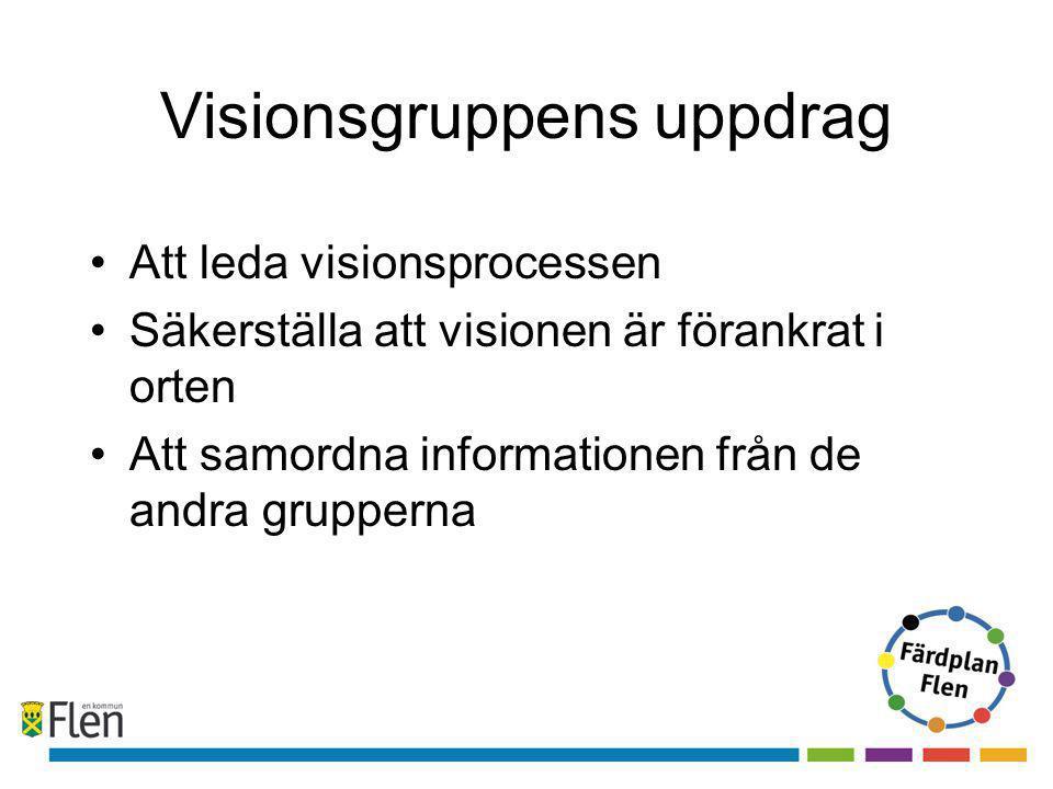 Visionsgruppens uppdrag