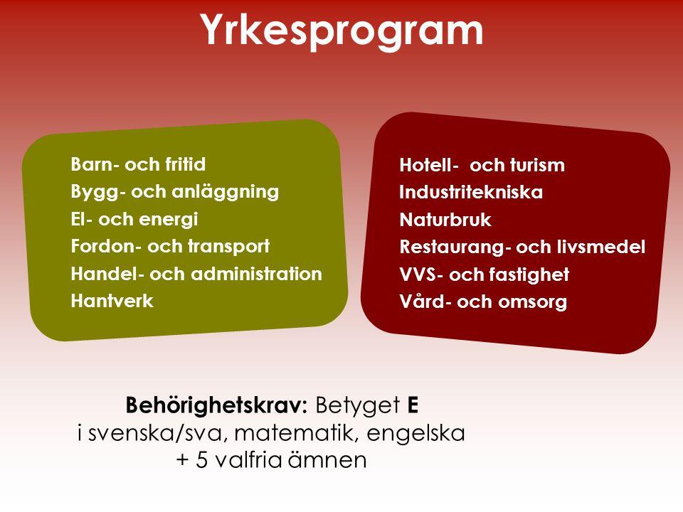 Yrkesprogram Behörighetskrav: Betyget E
