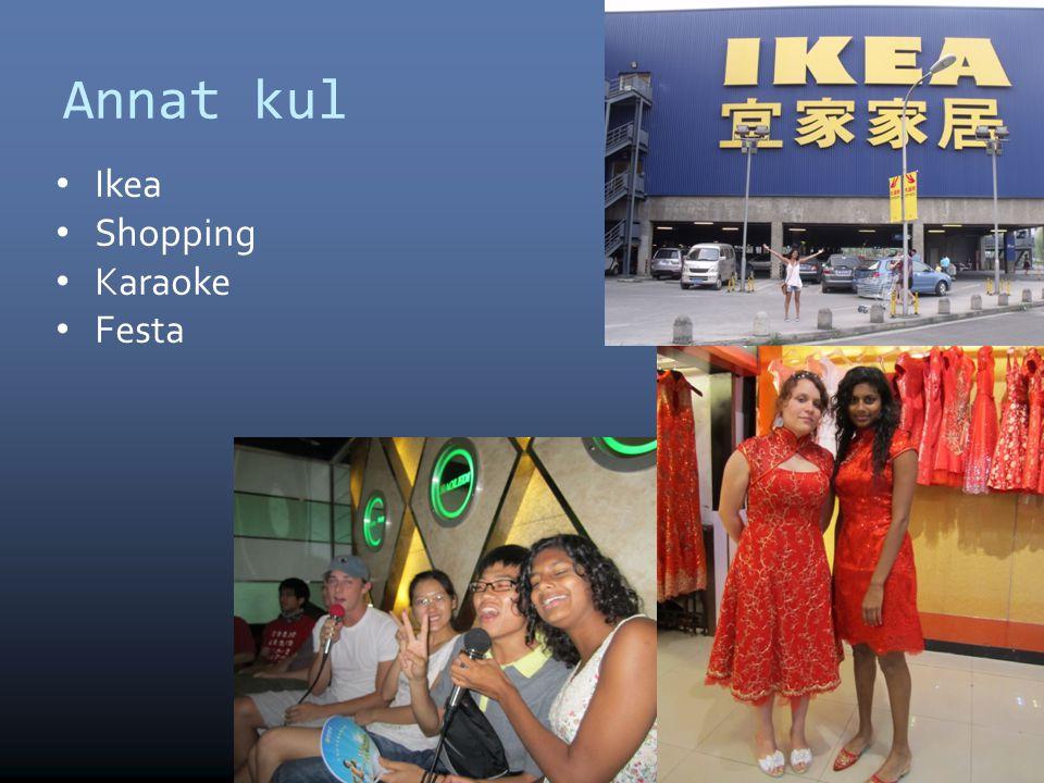 Annat kul Ikea Shopping Karaoke Festa 10