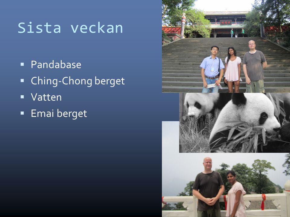 Sista veckan Pandabase Ching-Chong berget Vatten Emai berget 8