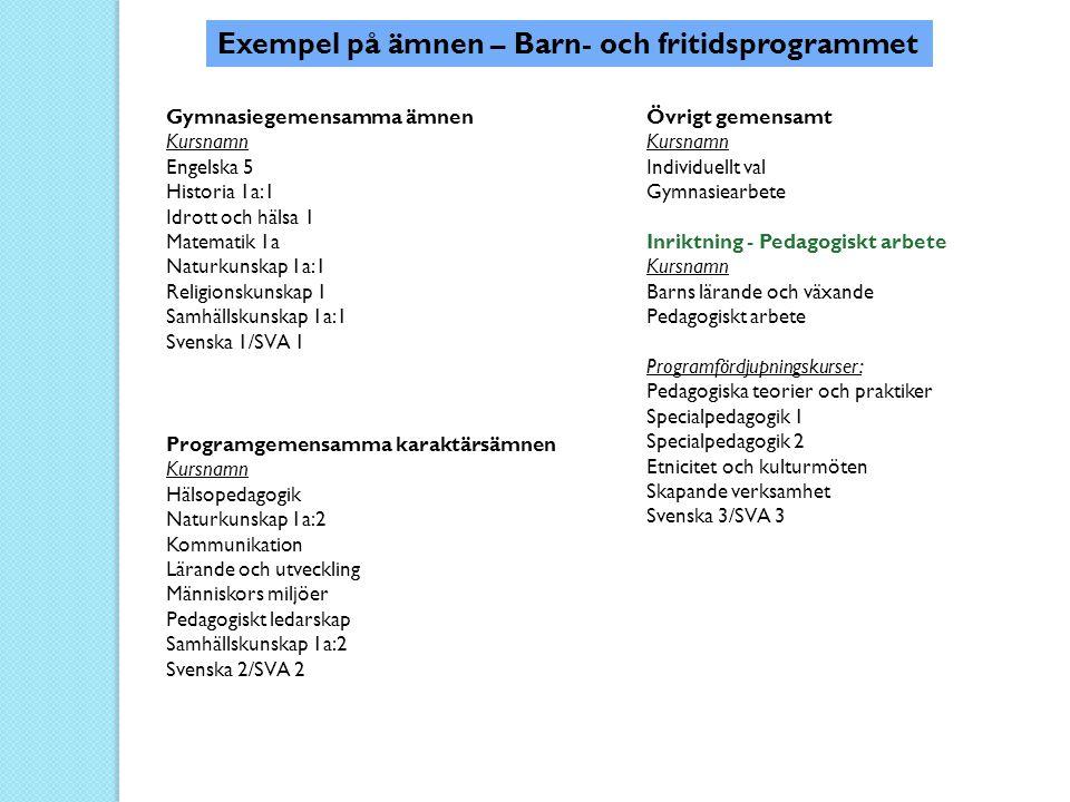 Exempel på ämnen – Barn- och fritidsprogrammet