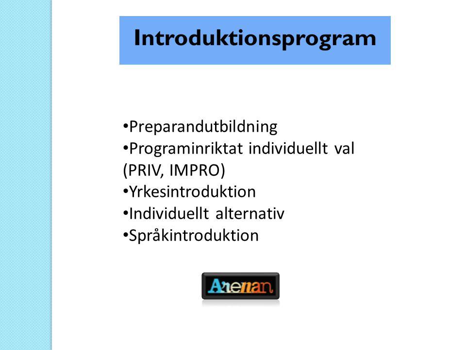 Preparandutbildning Programinriktat individuellt val (PRIV, IMPRO) Yrkesintroduktion.