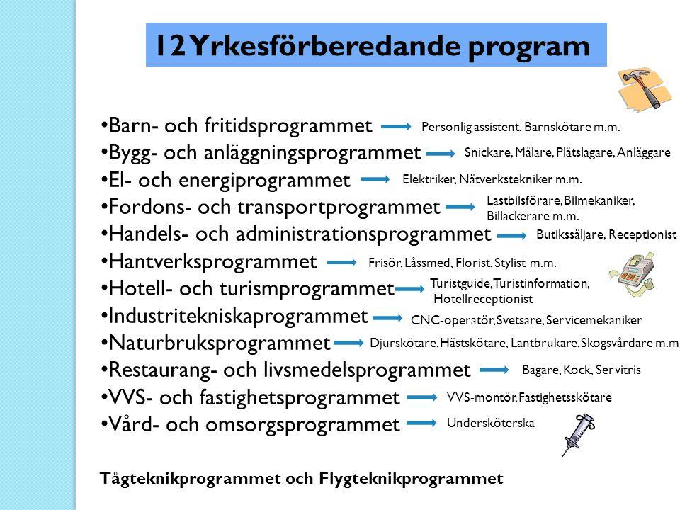 12 Yrkesförberedande program