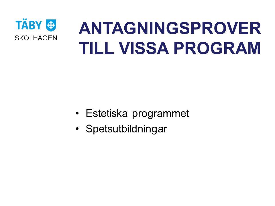 ANTAGNINGSPROVER TILL VISSA PROGRAM