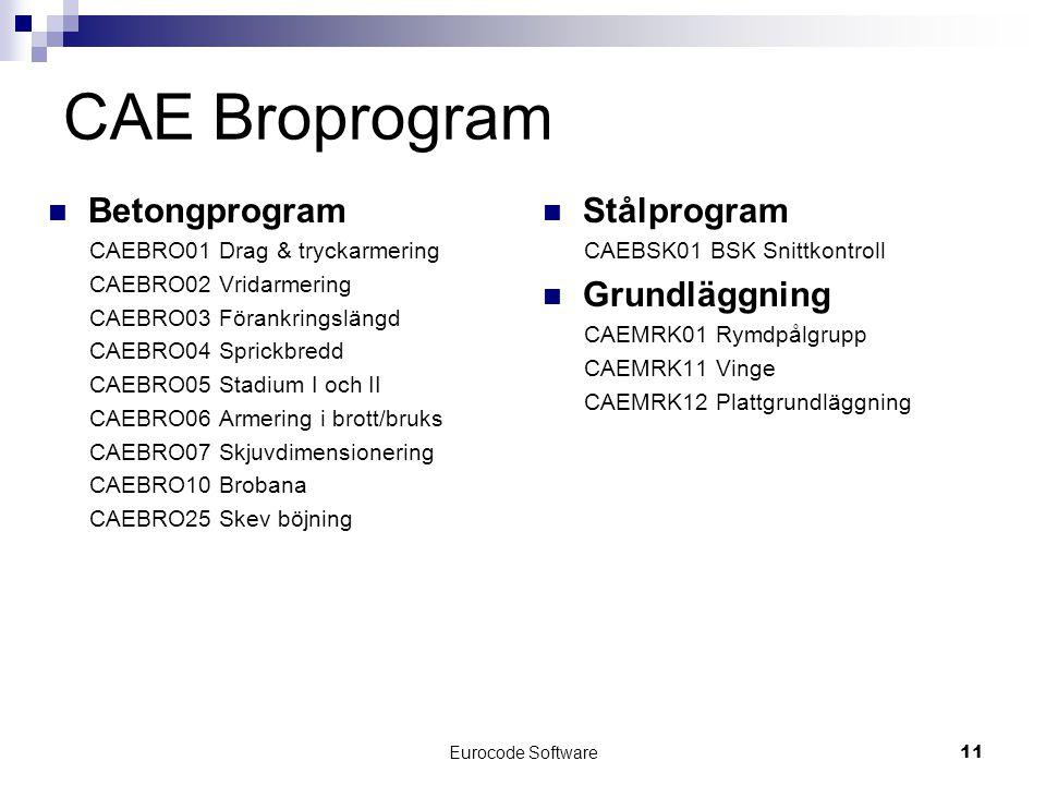 CAE Broprogram Betongprogram Stålprogram Grundläggning