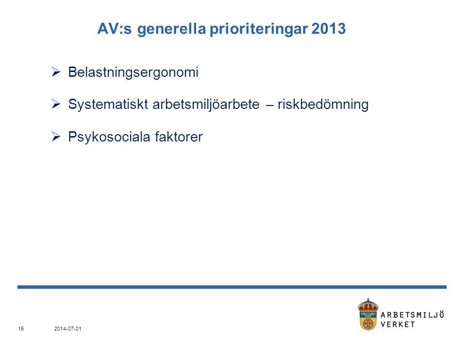 AV:s generella prioriteringar 2013