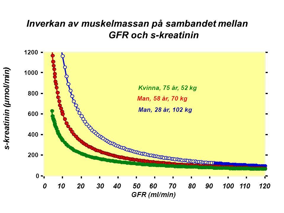 Inverkan av muskelmassan på sambandet mellan GFR och s-kreatinin