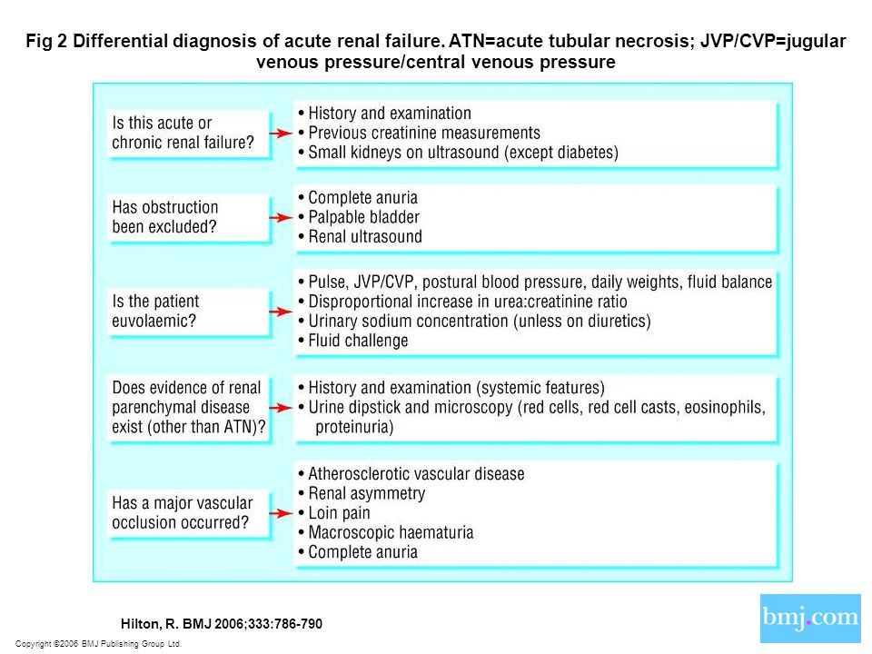 Fig 2 Differential diagnosis of acute renal failure