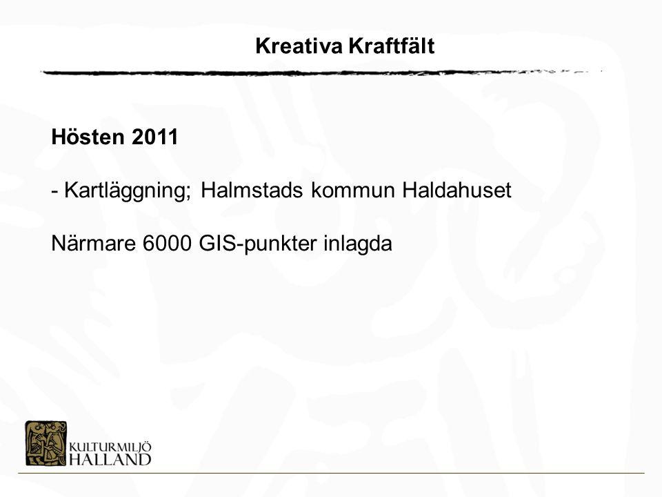 Kreativa Kraftfält Hösten 2011. - Kartläggning; Halmstads kommun Haldahuset.