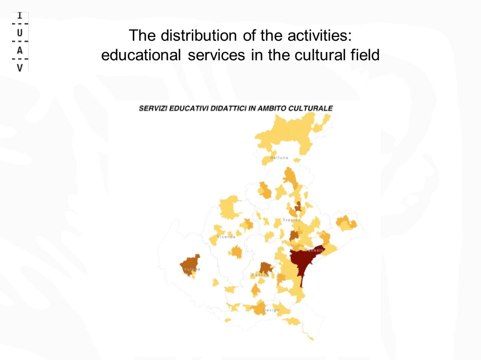 The distribution of the activities: educational services in the cultural field