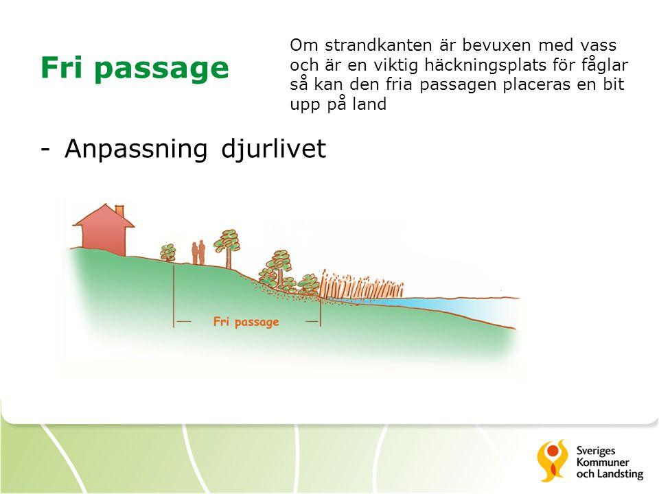 Fri passage Anpassning djurlivet